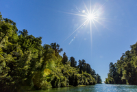 Sun over lush trees and remote river