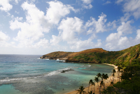Coral reef on tropical beach, Waikiki, Hawaii, United States
