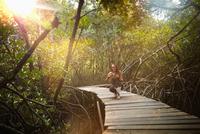 Pacific Islander woman photographing on walkway in jungle 11018070327| 写真素材・ストックフォト・画像・イラスト素材|アマナイメージズ