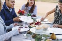 Woman serving pie at outdoor table 11018071549| 写真素材・ストックフォト・画像・イラスト素材|アマナイメージズ