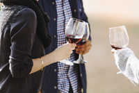 Close up of friends drinking wine