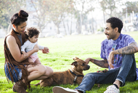 Parents playing with baby son and dog in park