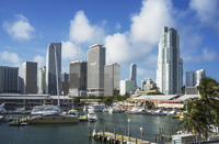 Miami highrise buildings and harbor