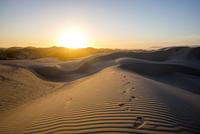 Footprints in desert sand dunes