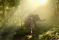 Pacific Islander woman walking with elephant in jungle