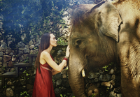 Pacific Islander woman petting elephant