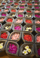 Close up of flower petals in containers