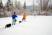 Caucasian couple and dogs cross-country skiing in snowy field