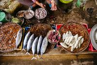 High angle view of vendor cleaning fish 11018072823| 写真素材・ストックフォト・画像・イラスト素材|アマナイメージズ