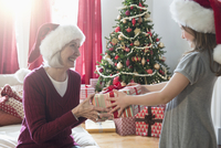 Caucasian grandmother and granddaughter giving Christmas gifts 11018073568| 写真素材・ストックフォト・画像・イラスト素材|アマナイメージズ