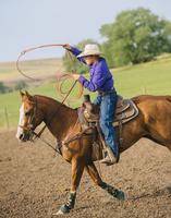 Cowboy throwing lasso on horseback