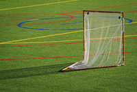Goal on lacrosse field
