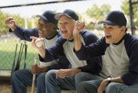 Baseball players cheering on bench 11018078088  写真素材・ストックフォト・画像・イラスト素材 アマナイメージズ