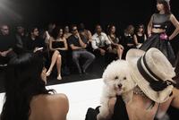 Chinese model on runway in fashion show 11018078793| 写真素材・ストックフォト・画像・イラスト素材|アマナイメージズ