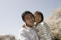 桜と父子 11019004118| 写真素材・ストックフォト・画像・イラスト素材|アマナイメージズ