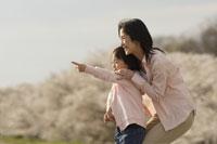 桜と母子 11019004143| 写真素材・ストックフォト・画像・イラスト素材|アマナイメージズ
