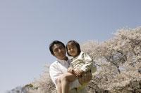 桜と父子 11019004155| 写真素材・ストックフォト・画像・イラスト素材|アマナイメージズ