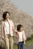 桜と母子 11019004185| 写真素材・ストックフォト・画像・イラスト素材|アマナイメージズ