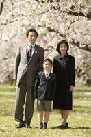 桜の前に並ぶ日本人家族