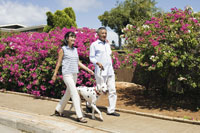 犬の散歩をするシニア夫婦