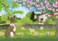 イギリス湖水地方の春のイメージ