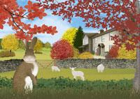 イギリス湖水地方の秋のイメージ 11019006061| 写真素材・ストックフォト・画像・イラスト素材|アマナイメージズ