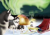 オーロラと犬ぞりイメージ