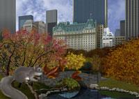 秋のセントラルパークとリスイメージ