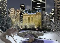 冬のセントラルパークとリスイメージ