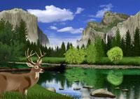 春のヨセミテ国立公園の風景とシカイメージ