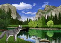 春のヨセミテ国立公園の風景とキツネイメージ