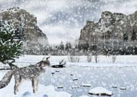 雪が降るヨセミテ国立公園の風景とキツネイメージ