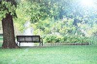公園イメージ 11019014344| 写真素材・ストックフォト・画像・イラスト素材|アマナイメージズ