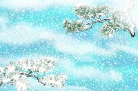 雪と松 イラスト