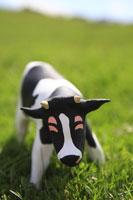 草原と牛 クラフト 11019015877| 写真素材・ストックフォト・画像・イラスト素材|アマナイメージズ