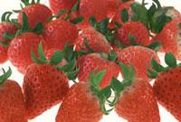 イチゴ 11019016122| 写真素材・ストックフォト・画像・イラスト素材|アマナイメージズ