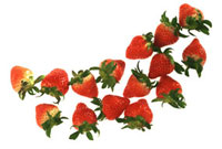 イチゴ 11019016123| 写真素材・ストックフォト・画像・イラスト素材|アマナイメージズ