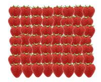 イチゴ 11019016138| 写真素材・ストックフォト・画像・イラスト素材|アマナイメージズ