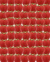 イチゴ 11019016139| 写真素材・ストックフォト・画像・イラスト素材|アマナイメージズ