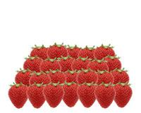 イチゴ 11019016142| 写真素材・ストックフォト・画像・イラスト素材|アマナイメージズ