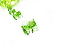 新緑と光イメージ CG