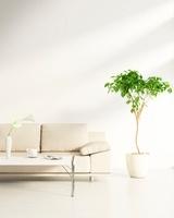 リビングルームのテーブルとソファ CG 11019024255| 写真素材・ストックフォト・画像・イラスト素材|アマナイメージズ