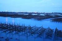 牡蠣養殖 嘉義県