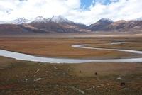 川と草原 チベット