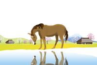 馬と春の里山風景 イラスト