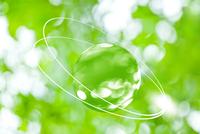 球体と新緑のイメージ CG