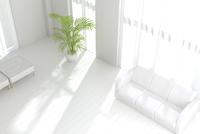白いソファと観葉植物が置かれたリビングルーム CG 11019031624| 写真素材・ストックフォト・画像・イラスト素材|アマナイメージズ