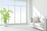 白いソファと観葉植物が置かれたリビングルーム CG 11019031753| 写真素材・ストックフォト・画像・イラスト素材|アマナイメージズ