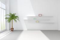 観葉植物が置かれた白い部屋 CG 11019031768| 写真素材・ストックフォト・画像・イラスト素材|アマナイメージズ