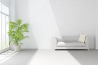白いソファと観葉植物が置かれたリビングルーム CG 11019031769| 写真素材・ストックフォト・画像・イラスト素材|アマナイメージズ